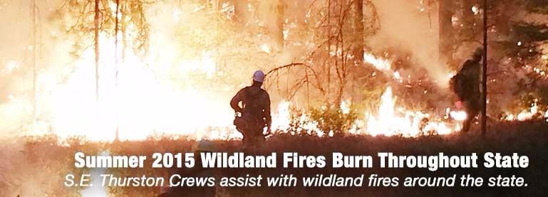 2015-summer-wildland-fires