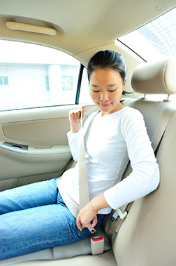 All Vehicle Occupants Must Be Properly Restrained In Seating Positions