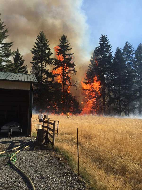 SETFA (Yelm & Rainier Fire Dept.) respond to fast growing brush fire threatening residential structures.