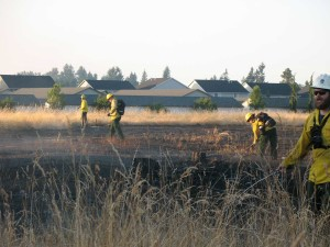 SETFA (Yelm & Rainier) and Department of Natural Resources personnel extinguish hot spots in scorched field in Yelm.