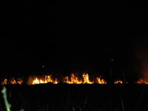 Fire burns a field off of Old McKenna Highway during the 4th of July Holiday weekend.